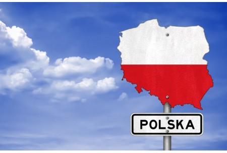 Чем топят в Польше?