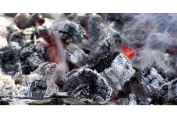 Перспективы применения древесного угля